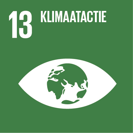 SDG 13 Klimaatactie